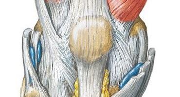 Crohnova choroba a bolesti kloubů
