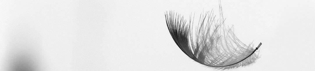 feather_lightweight